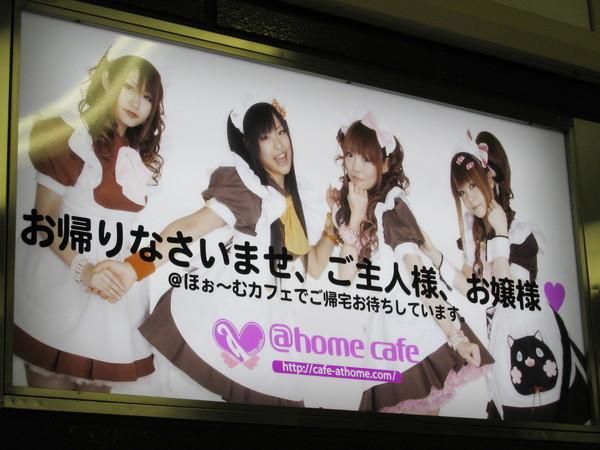 女僕咖啡店的招牌歡迎詞:「主人,歡迎回來!」