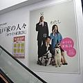 在賣場內的手扶梯旁驚見Softbank廣告狗明星「歐多桑」全家福