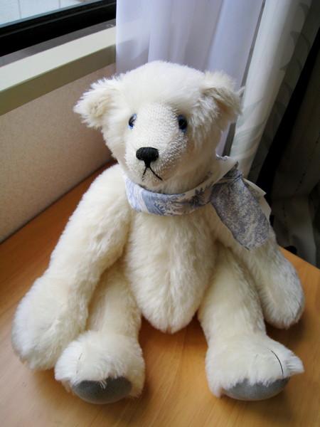 帶點憂鬱氣質的大白熊,跟我家動不動就嘟嘴鬧脾氣的大白頗神似