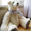 換個角度看,其實大白熊手長腳長