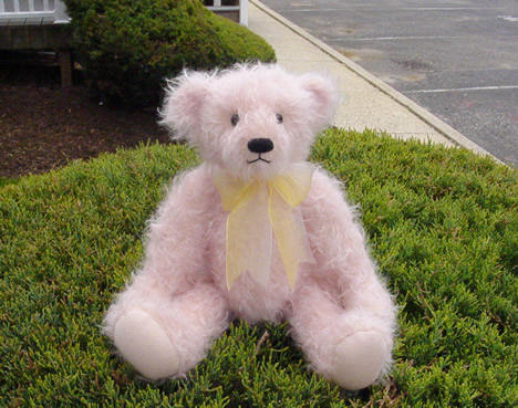 這是我當年離開紐約時,書書送的粉紅小熊「壽司」