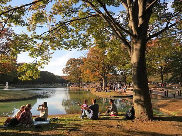 代代木公園之秋