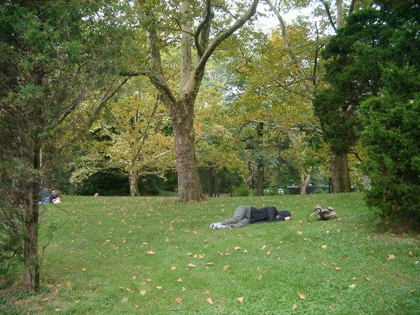 我真的很放的開,竟在中央公園草地上直接睡起來