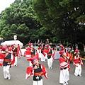 元氣祭這個民間街頭跳舞派對,源於日本四國的高知縣