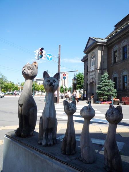 等紅燈時亂拍的小貓咪們。背景是小樽音樂盒堂本館