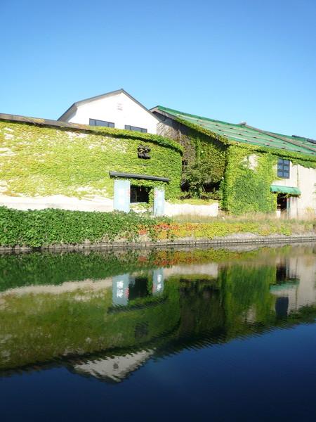 天色好得誇張,舊倉庫在小樽運河裡的倒影很明顯
