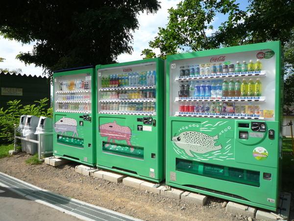 海豹、山豬、和一隻神秘動物﹝?﹞造型的飲料販賣機