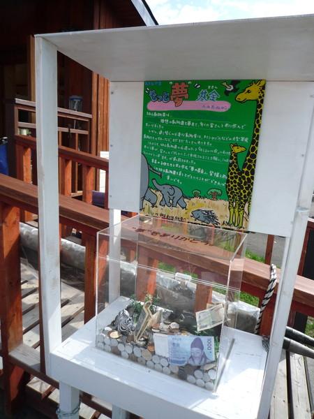 夢想基金募捐箱,為了籌募給大型草食動物建房舍的預算