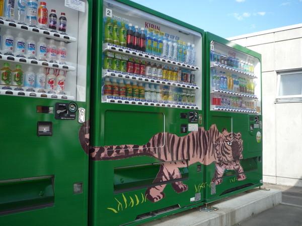 還有老虎圖案的