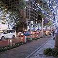 沿著櫸木坂大道往上散步,很浪漫