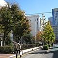 2008/11/22,這個週末陽光普照,在港區運動中心健身房運動完後,
