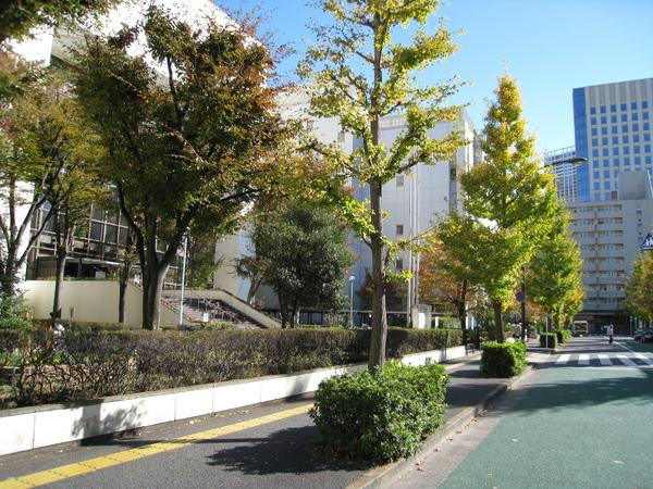 左手邊的白色大樓就是東京都港區區民運動中心