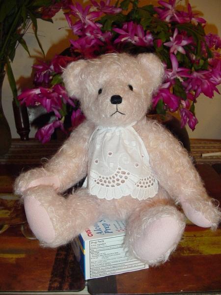 書書爲《愛情,真相大白》讀者手工訂做的粉紅小熊!