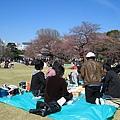 這群大男孩的賞櫻野餐,竟是一座麥當勞薯條山﹝可惜我折回拍照時只剩一半﹞
