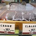 左為黑芝麻御荻(ごまおはぎ),右為紅豆沙御荻(こしあんおはぎ),也是一個157円
