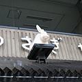 兔屋的招牌上真的有隻肥嘟嘟的白兔