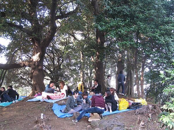 搶不到櫻花數下座位的賞花客退而求其次,爬上山坡野餐