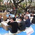 田中電機的賞花會很專業,用紙箱排成桌子