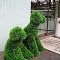 店門口可愛的小狗造型樹