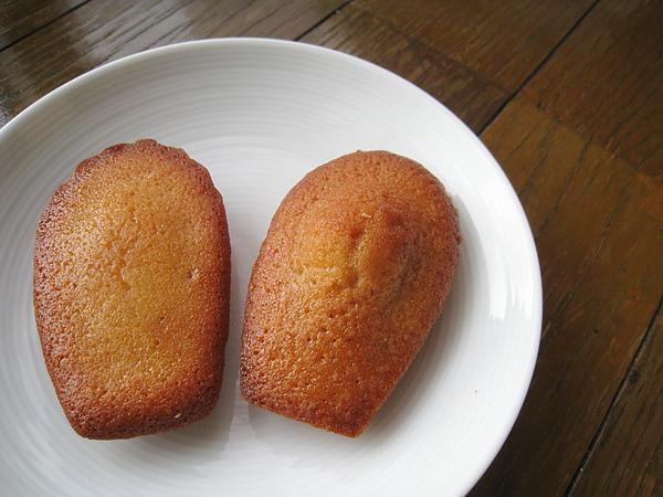 費南雪和馬德蓮,兩種都是我的愛,尤其是薑汁口味的費南雪