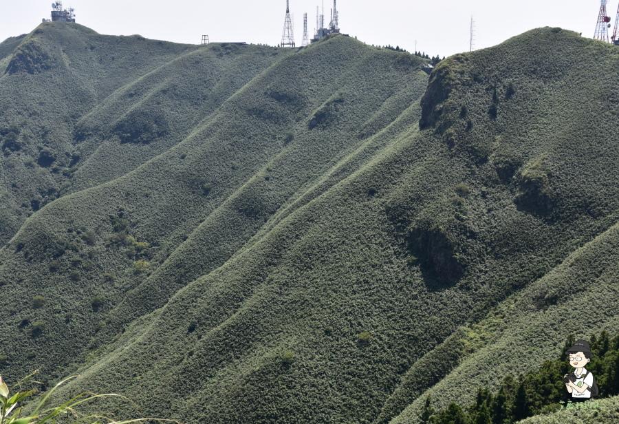 小觀音山西西峰141.JPG