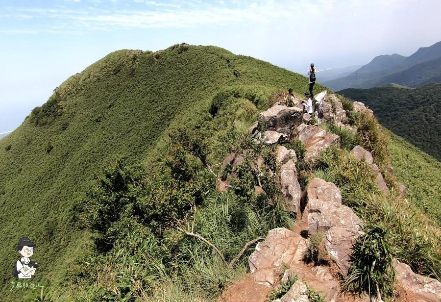 小觀音山西西峰143.jpg