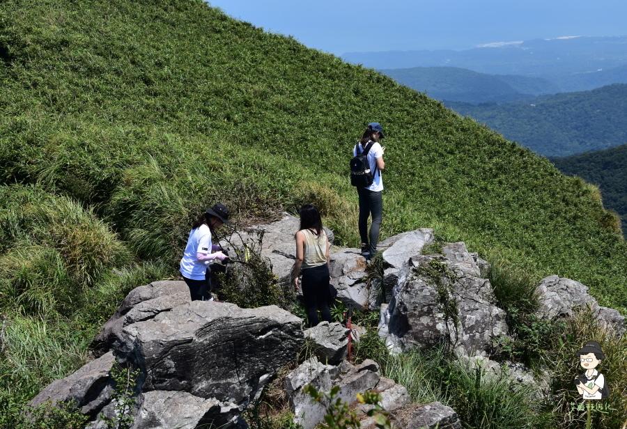 小觀音山西西峰144.JPG