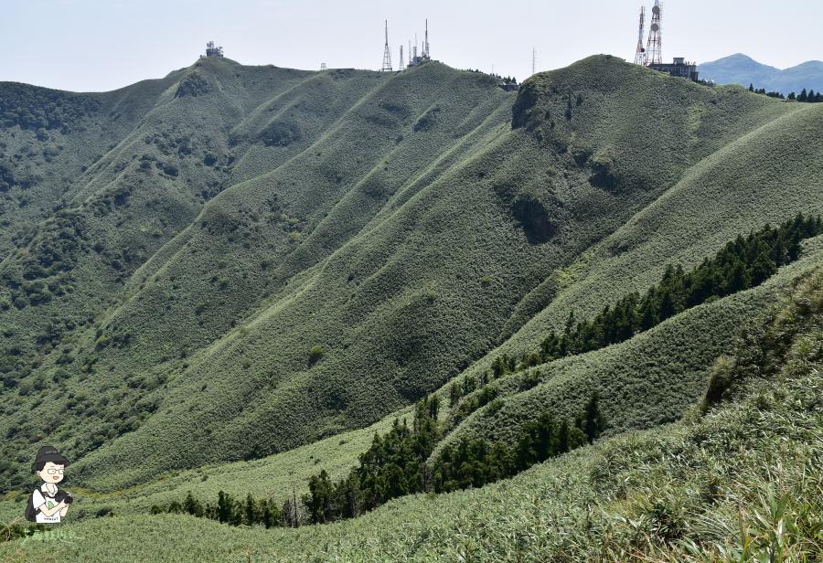 小觀音山西西峰145.JPG