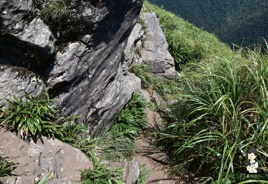 小觀音山西西峰151.JPG