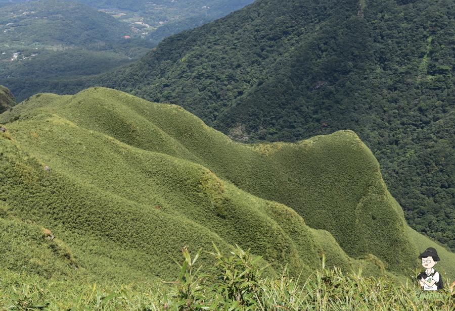 小觀音山西西峰165.JPG