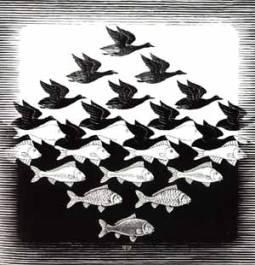 FG07_EC-Escher=sky-water.jpg