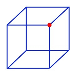FG17-PtV01=Necker Cube1.jpg