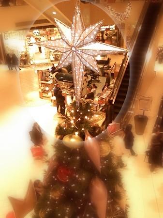 01=Tree-Ed.jpg