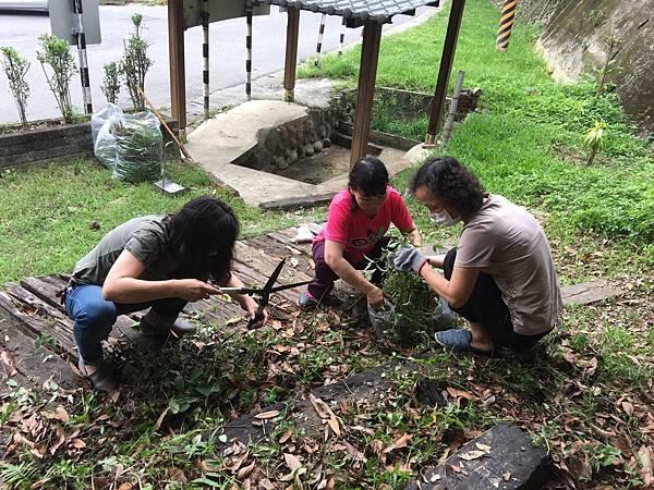 527社區環境清潔公益活動_170705_0042.jpg