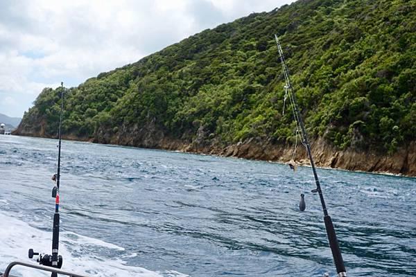 紐西蘭第二天30.jpg