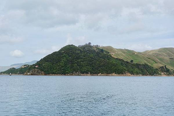 紐西蘭第二天47.jpg