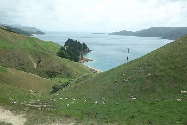 紐西蘭第二天49.jpg