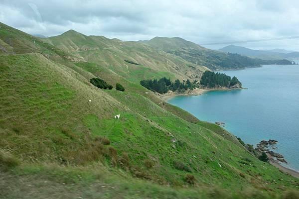 紐西蘭第二天48.jpg