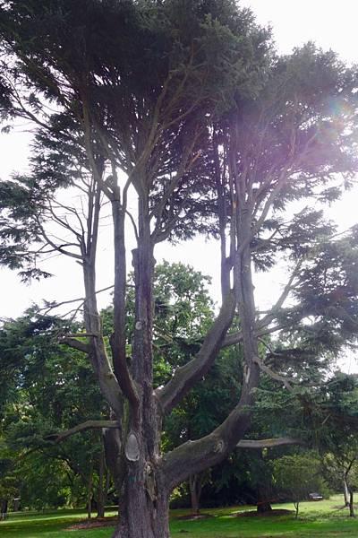 紐西蘭第四天32.jpg