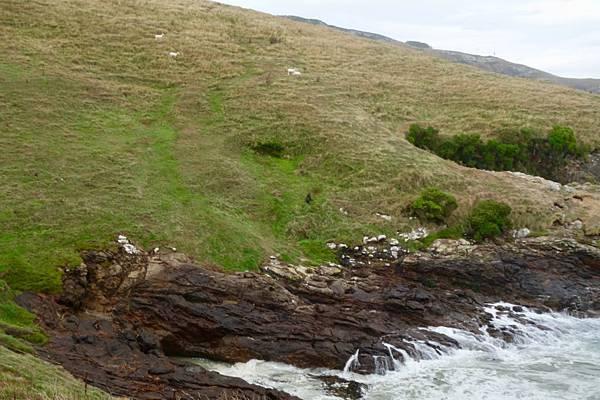紐西蘭第六天69.jpg