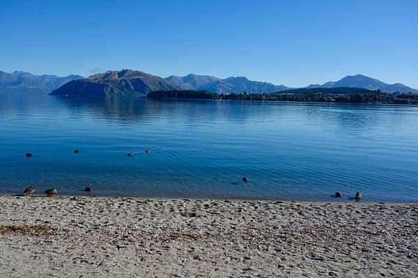 紐西蘭第十天02.jpg