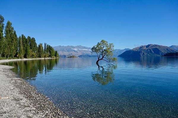 紐西蘭第十天04.jpg