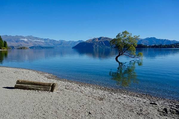 紐西蘭第十天05.jpg