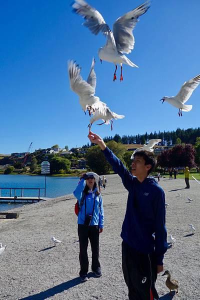 紐西蘭第十天26.jpg