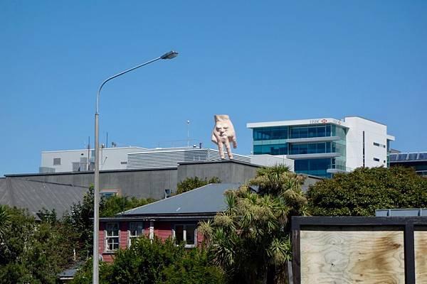 紐西蘭第十一天56.jpg