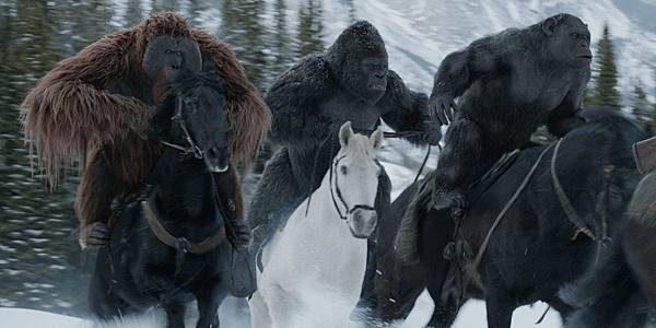 War-for-the-Planet-of-the-Apes-Maurice-Luca-and-Rocket-on-horses.jpg