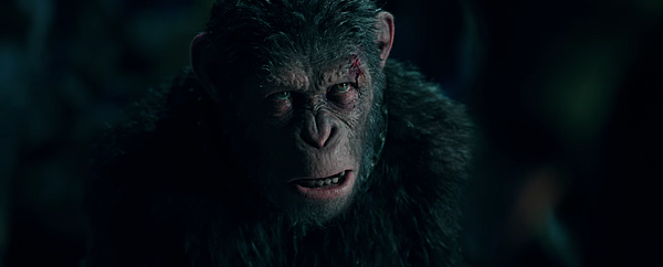 war-for-the-planet-of-the-apes-movie-9.png