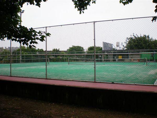 草地網球場