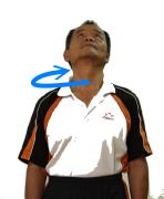 頸部-2.png