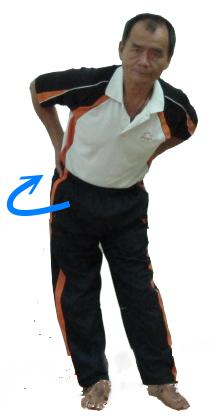 腰部-2.png